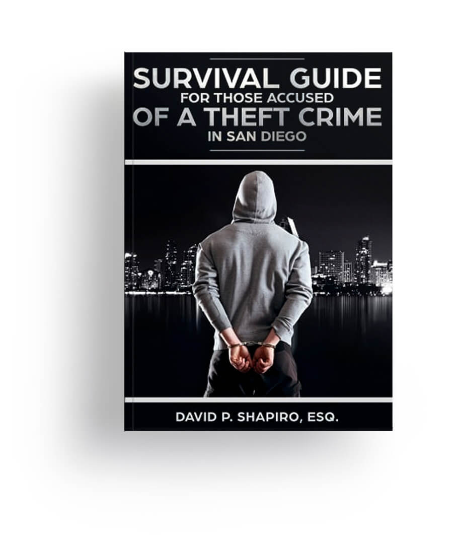 theft book